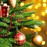 joulupidu-tunnuspilt